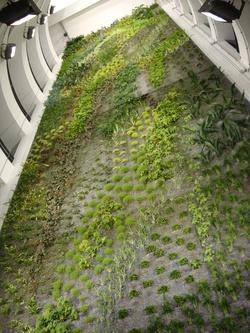 Mur végétal du parking souterrain de Perrache