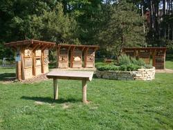 Urban bees Parc de la Tête d'Or