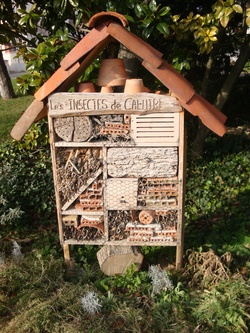 Urban bees de Caluire