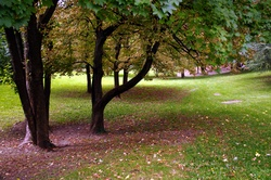 Parc de la Cerisaie