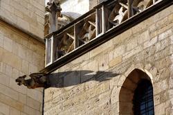 Gargouille sur l'Eglise Saint-Nizier