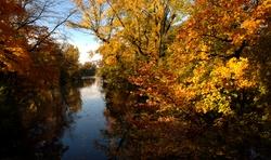 Lac du parc à l'automne