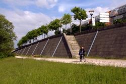 Faire du vélo sur les quais du Rhône