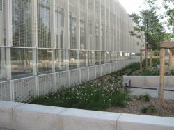 Construction de la bibliothèque de la Duchère