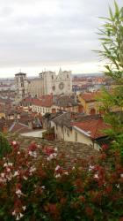 Vue en plongée sur les toits de Saint-Jean et la Cathédrale