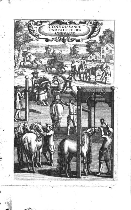 Delcampe, La Connoissance parfaite des chevaux, 1741 (BmL, 317276)
