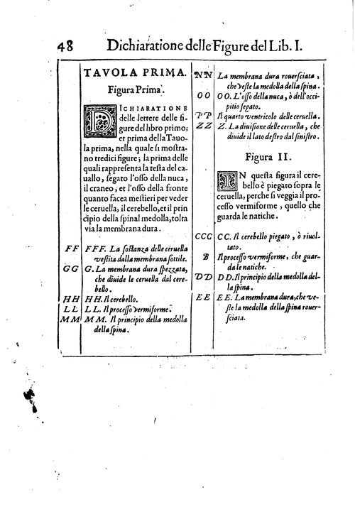 miniature document