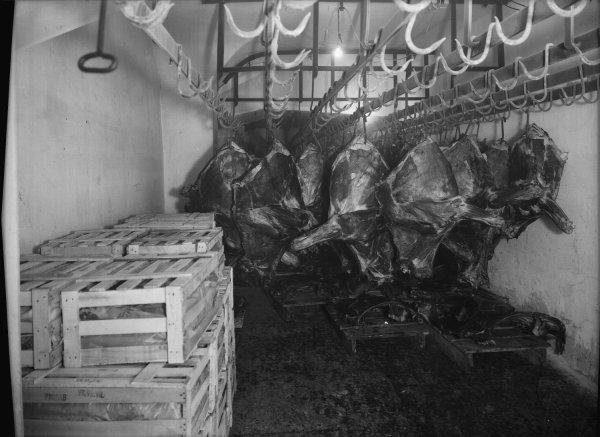 [Société des entrepôts frigorifiques lyonnais : cageots et stockage de quartiers de viande]