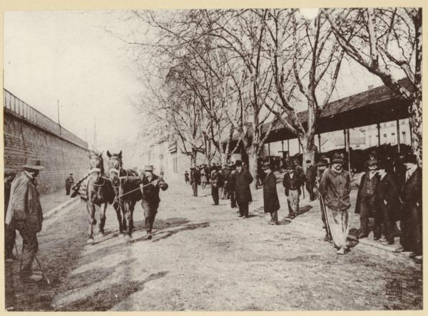 [Essai des chevaux au marché de Charabarra, à Perrache, au début du XXe siècle]