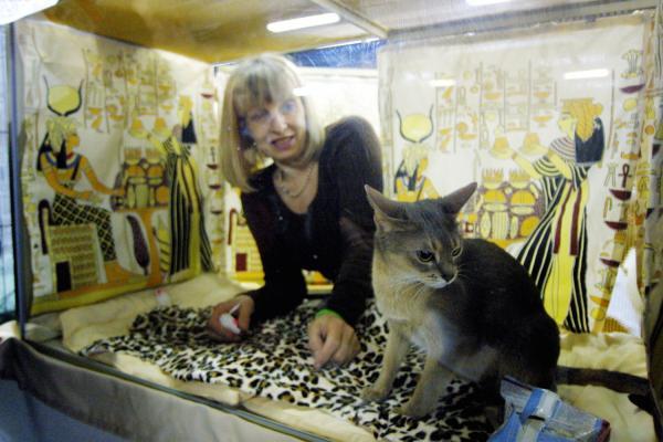[Espace Double Mixte de la Doua : salon Animalyus, 2001]