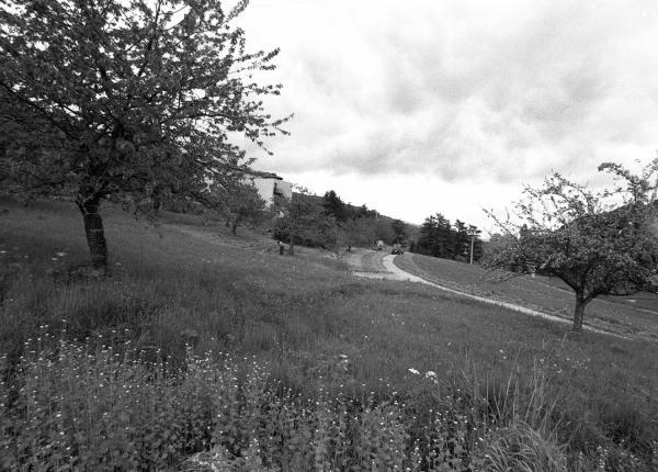 Les Monts du Pilat