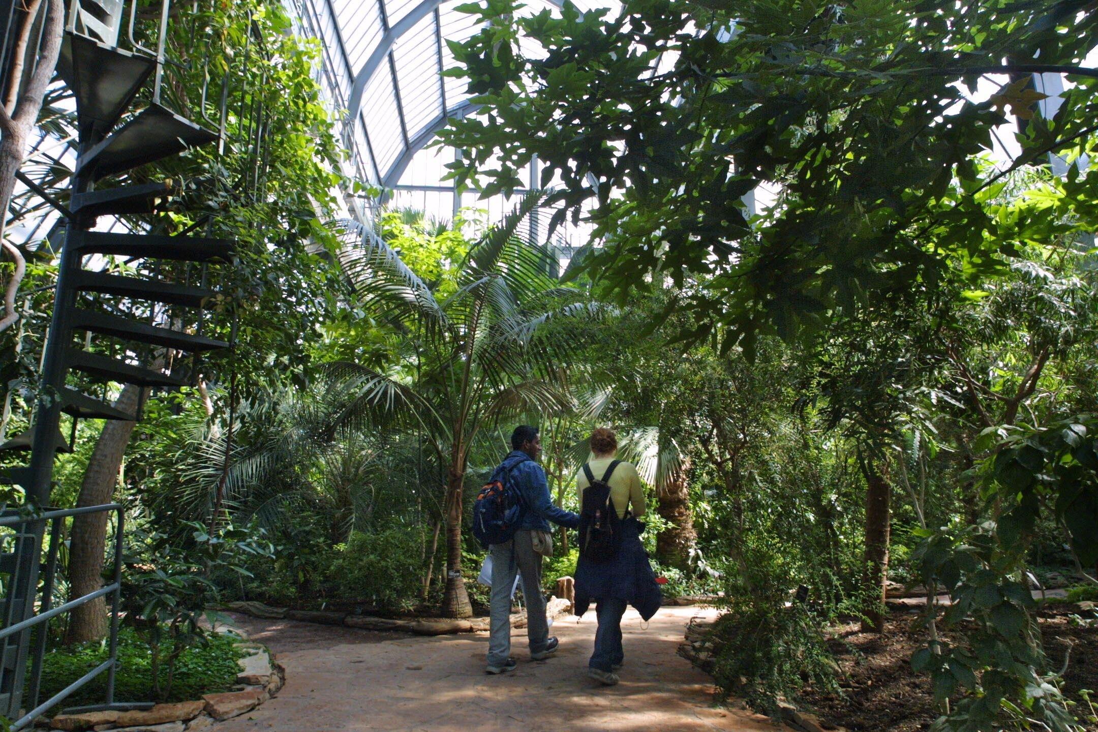 Photographes en rh ne alpes les grandes serres et le jardin botanique du parc de la t te d 39 or - Jardin d hiver de la berteliere ...