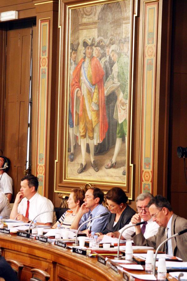 [Conseil municipal de Lyon : séance du 20 juin 2005]