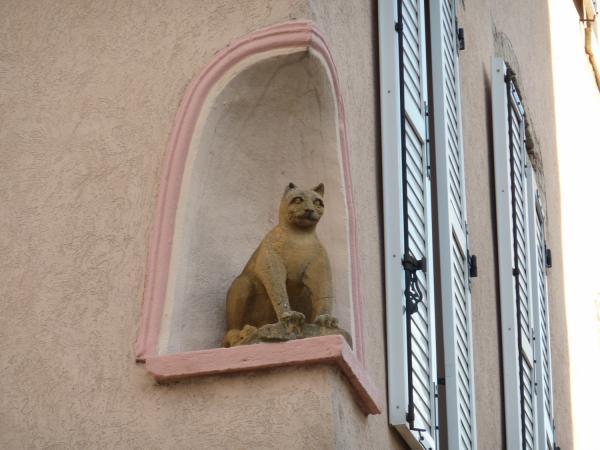 Le Chat de Montchat