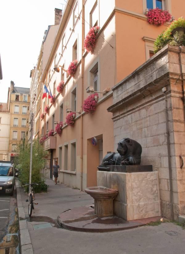 Un des deux lions de la Place Sathonay