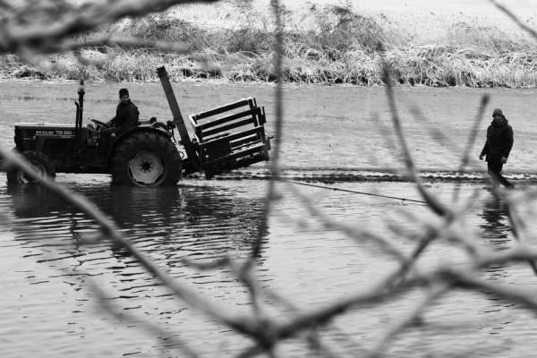 Pêche dans la Dombes 05/36 : Les pêcheurs tirent le filet à tour de rôle...