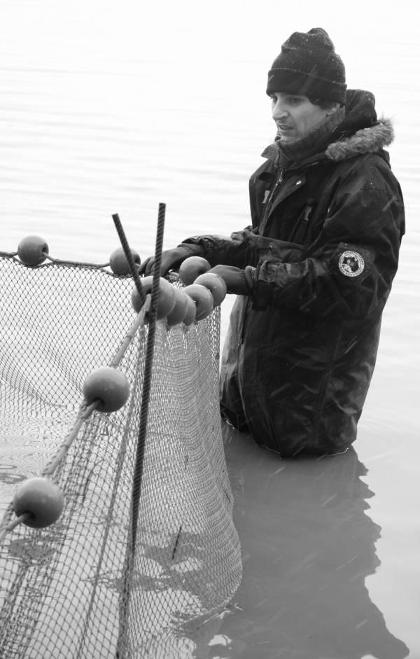 Pêche dans la Dombes 14/36 : Le pêcheur s'assure de la bonne tension du filet...