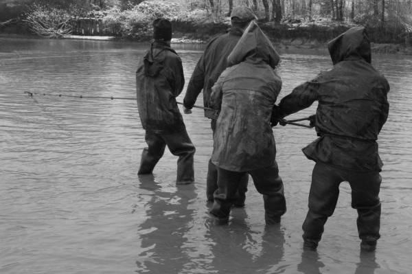 Pêche dans la Dombes 07/36 : Hô hisse...