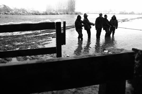 Pêche dans la Dombes 08/36 : Les pêcheurs tirent le filet...
