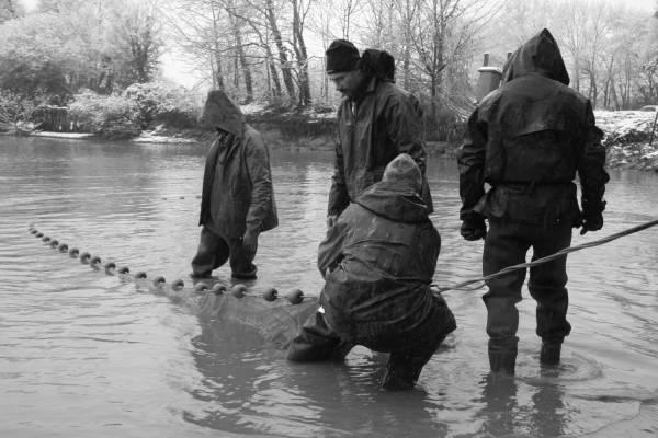 Pêche dans la Dombes 10/36 : Arrivés vers la digue (artificielle)...