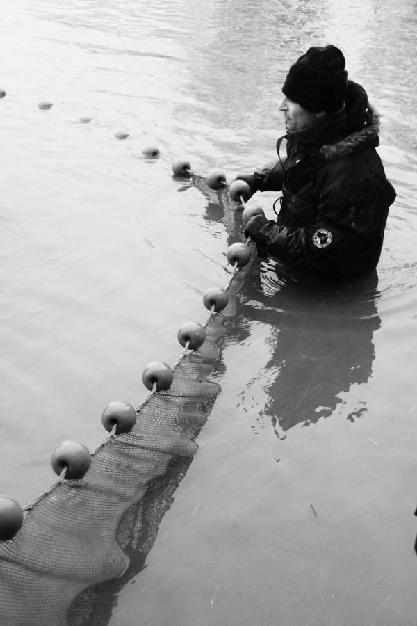 Pêche dans la Dombes 11/36 : Arrivés vers la digue (artificielle)...