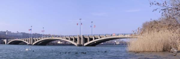 Le pont Pasteur. 5/5 (pont Pasteur Perrin)
