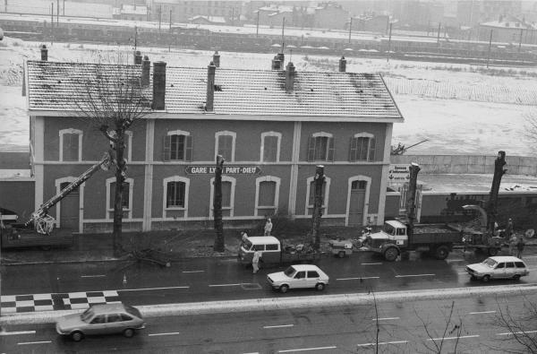 [Élagage des platanes devant l'ancienne gare de Lyon Part-Dieu]