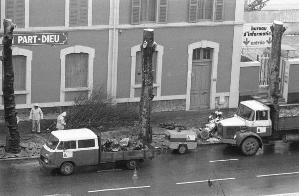 [La coupe des arbres devant l'ancienne gare de Lyon Part-Dieu]