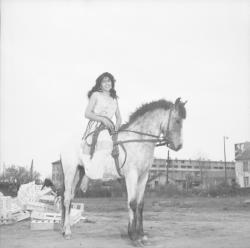 [Zorka Kostich et le cheval Tarjan]
