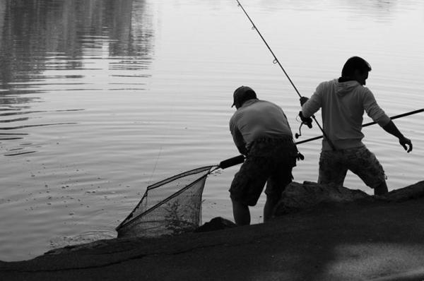 Pêcheurs au parc de la Tête d'Or