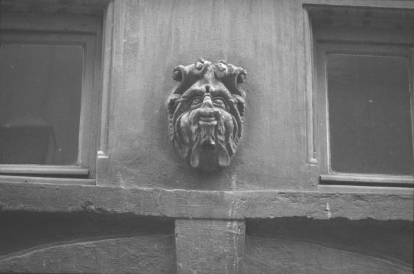 Les Lions de Lyon (sculptures)
