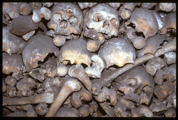 [La chapelle des Brotteaux : l'ossuaire dans la crypte]