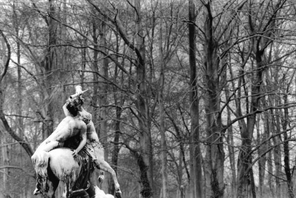 """[""""La Centauresse et le faune"""", d'Augustin Courtet]"""