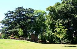 Parc de Rancé, Genay