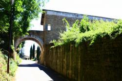 Le château, Genay