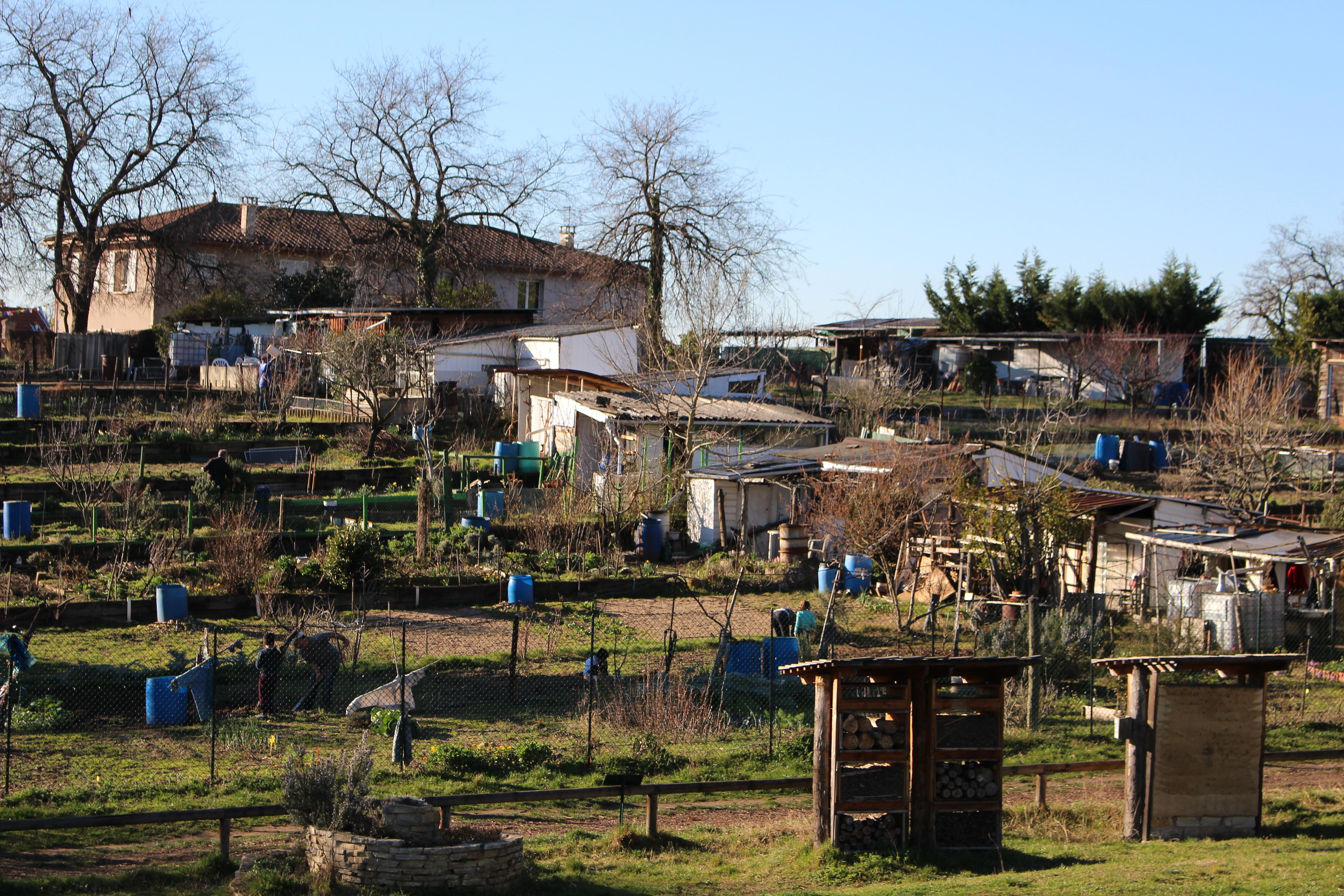 Photographes En Rhone Alpes Jardins Ouvriers Montchat