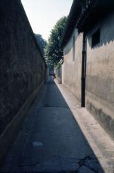 [Une ruelle, à la Croix-Rousse (?)]