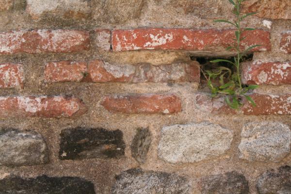 Assise de réglage en brique