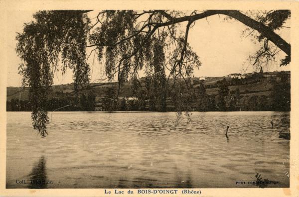 Le lac du Bois d'Oingt (Rhône)