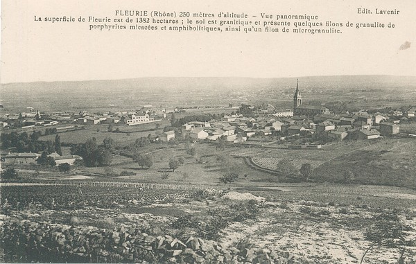 Fleurie (Rhône) : 250 mètres d'altitude. Vue panoramique