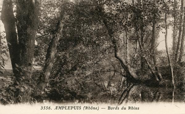 Amplepuis (Rhône) : Bords du Rhins