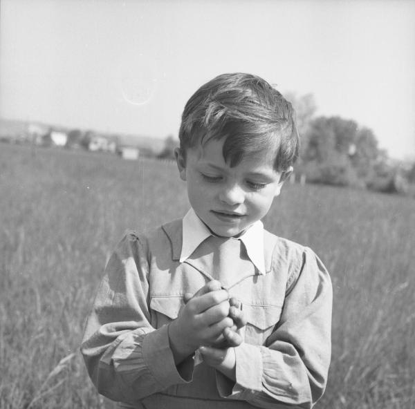 [Un petit garçon dans le champ tient quelquechose dans les mains]