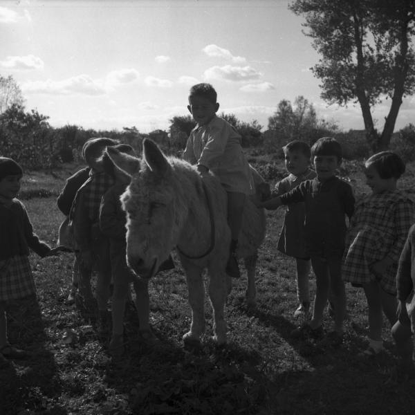 [Un enfant sur le dos d'un âne]