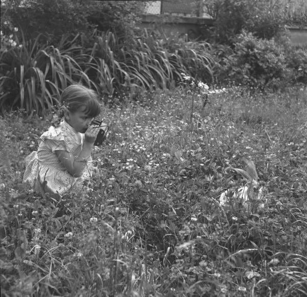 [Une petite fille essaie de prendre en photo un gros lapin]