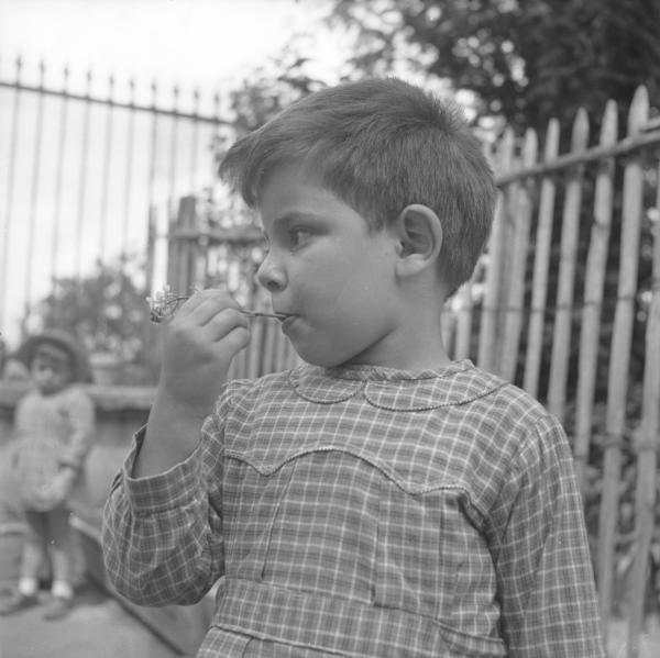 [Portrait d'un enfant une fleur dans la bouche]
