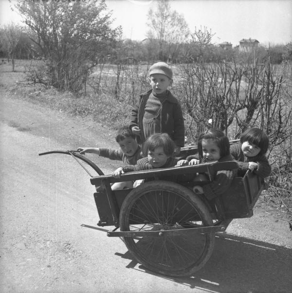 [Filles et garçons dans une charrette en pleine campagne]
