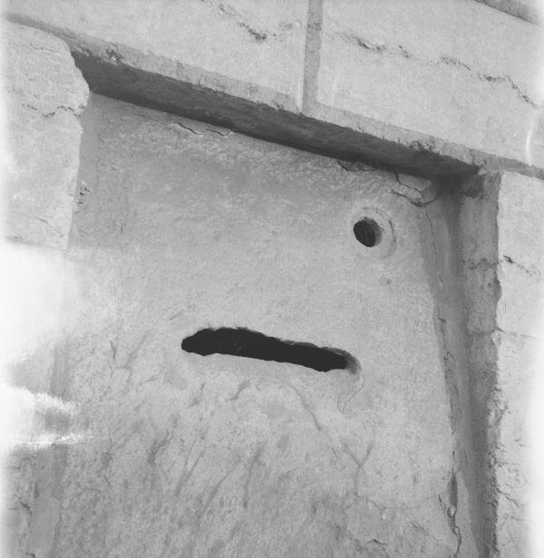 """""""Gueule de raie , Bouche d'(a)mur"""""""