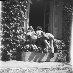 [Trois petites filles adossées sur le rebord d'une fenêtre]