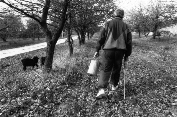 [Pierre Aymé, chercheur de truffes en Drôme du Sud]