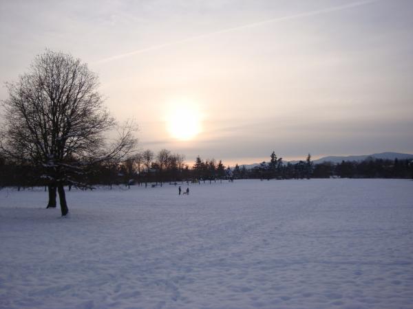 Coucher de soleil dans le parc